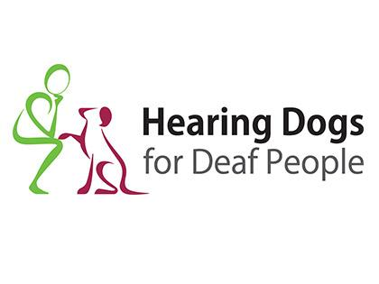Marcus our Trainee Hearing Dog
